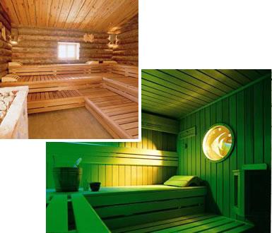 sauna professionnels
